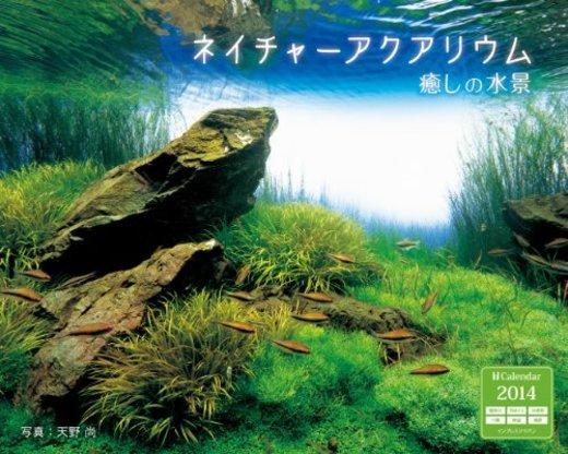 インプレスカレンダー2014 ネイチャーアクアリウム 癒しの水景 ([カレンダー])
