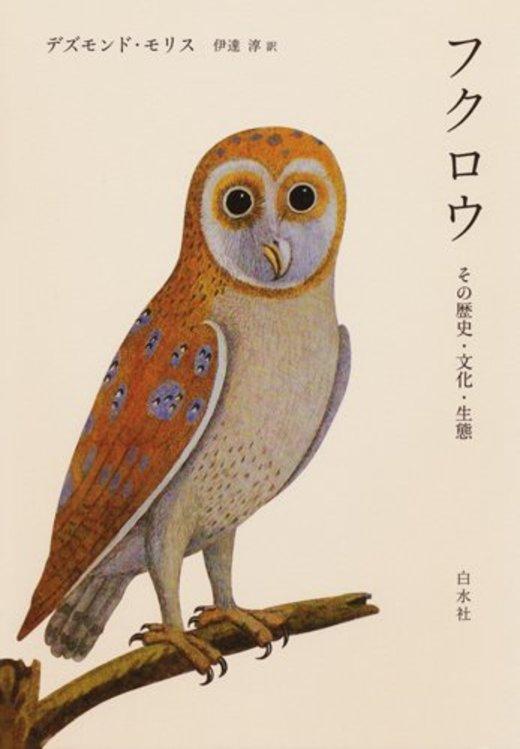 フクロウ ─ その歴史・文化・生態