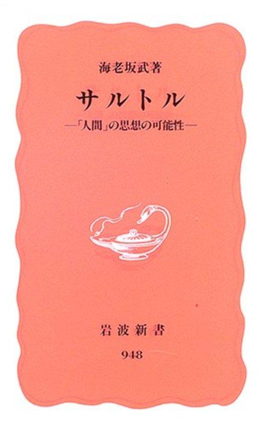 サルトル―「人間」の思想の可能性 (岩波新書 新赤版 (948))