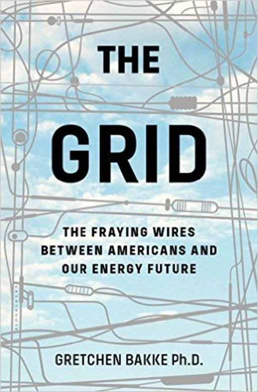 The Grid: The Fraying Wires Between Americans and Our Energy Future (英語)