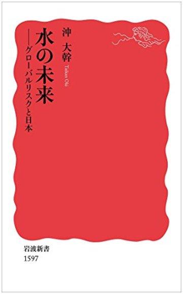 水の未来――グローバルリスクと日本 (岩波新書)