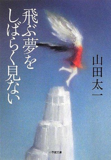 飛ぶ夢をしばらく見ない (小学館文庫)
