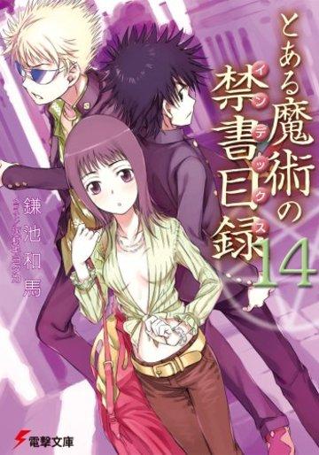 とある魔術の禁書目録(14) (電撃文庫)