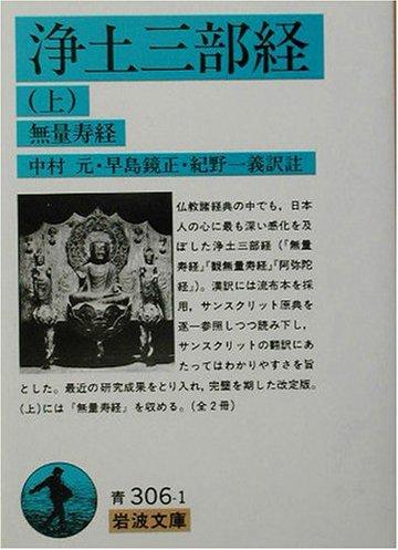 浄土三部経〈上〉無量寿経 (岩波文庫)
