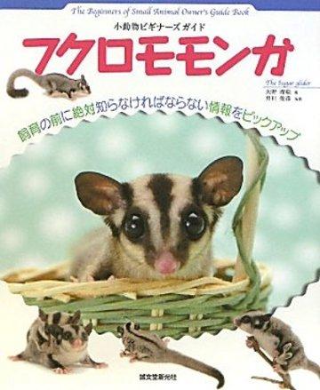 フクロモモンガ―小動物ビギナーズガイド (SMALL ANIMAL POCKET BOOK SERIES)