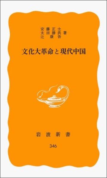 文化大革命と現代中国 (岩波新書)