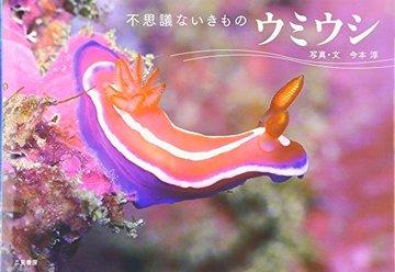 ウミウシ―不思議ないきもの