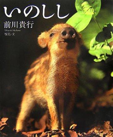 いのしし (アリス館写真絵本シリーズ)