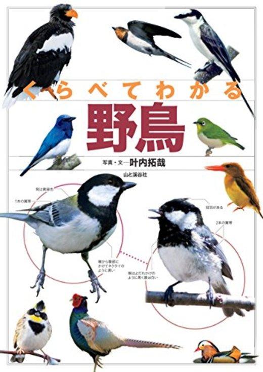くらべてわかる 野鳥 (くらべてわかる図鑑)