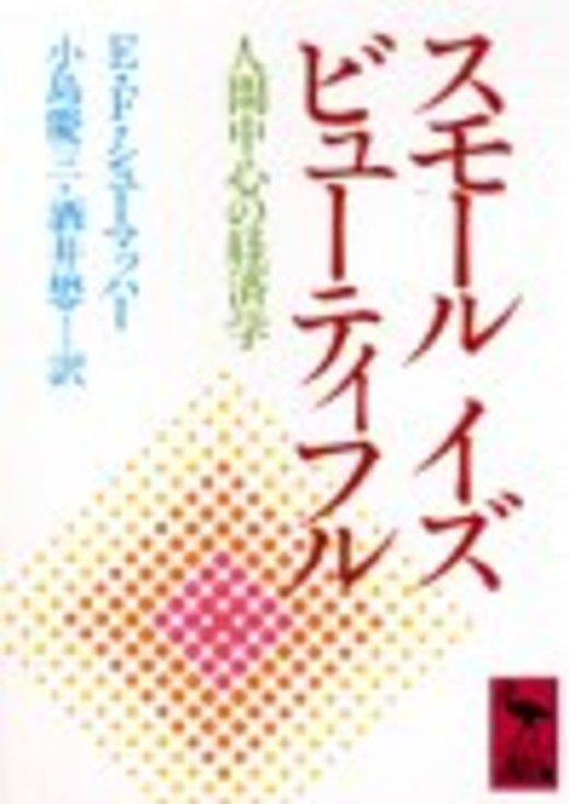 スモール イズ ビューティフル (講談社学術文庫)