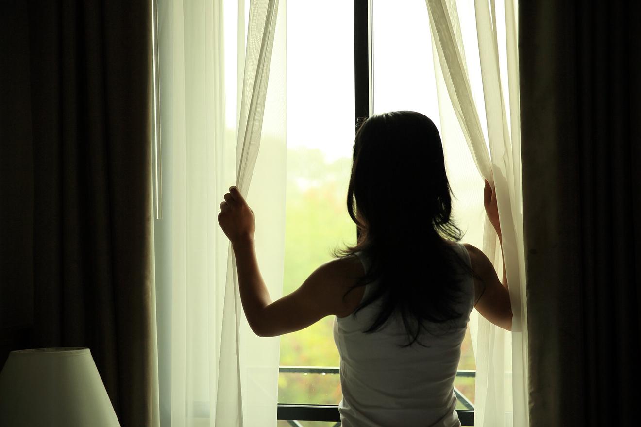 窓からのりだす知性~夏の最初の朝