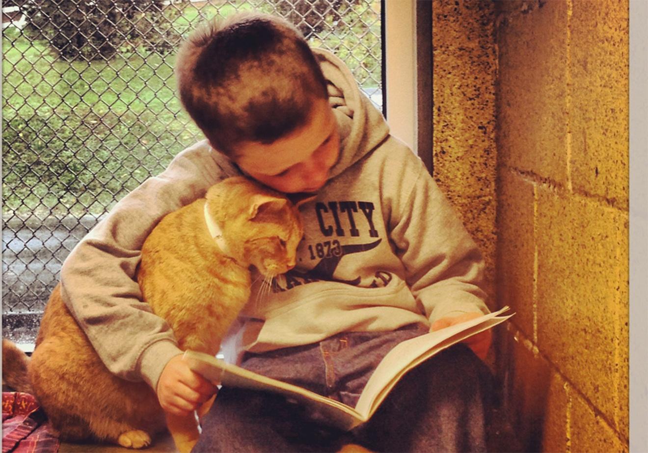 英大学が発表、世界に「寛容さ」を与えた10冊の本