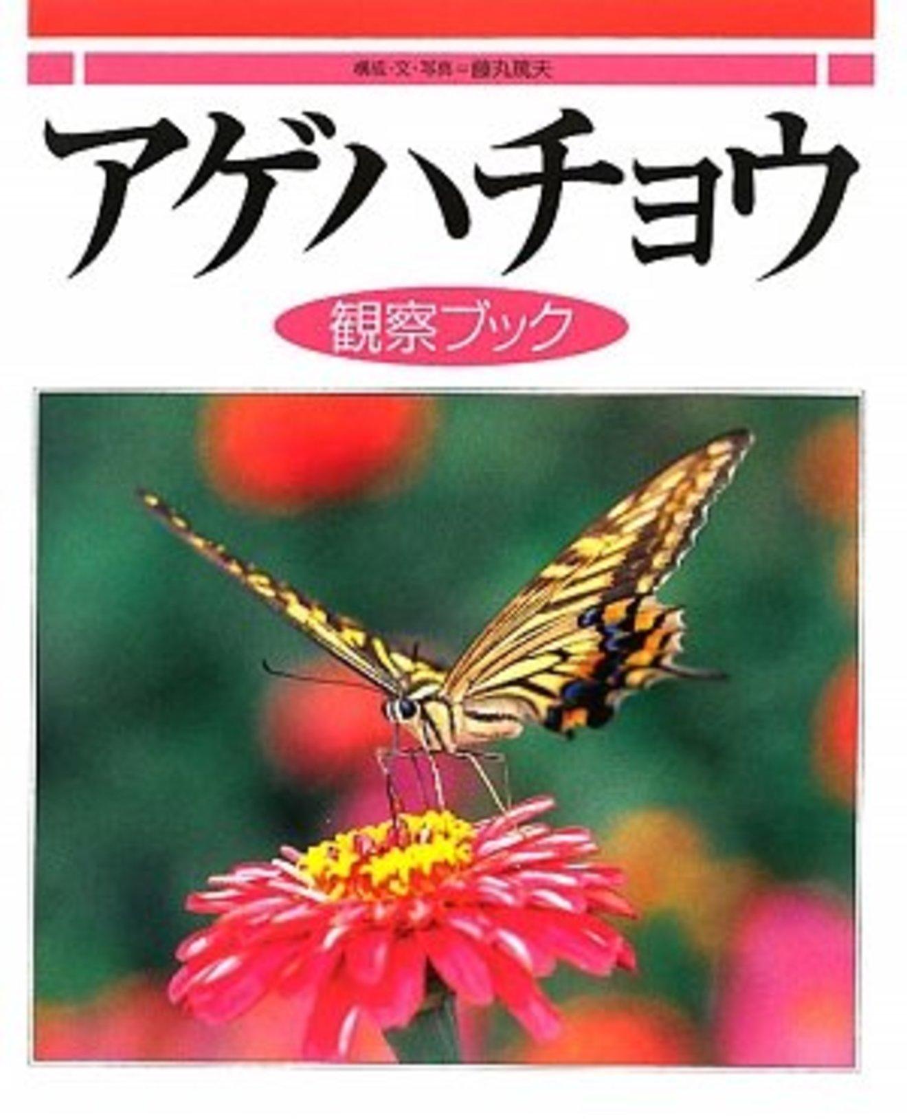 アゲハ蝶の幼虫の育て方をご紹介!餌やりから参考になる本まで