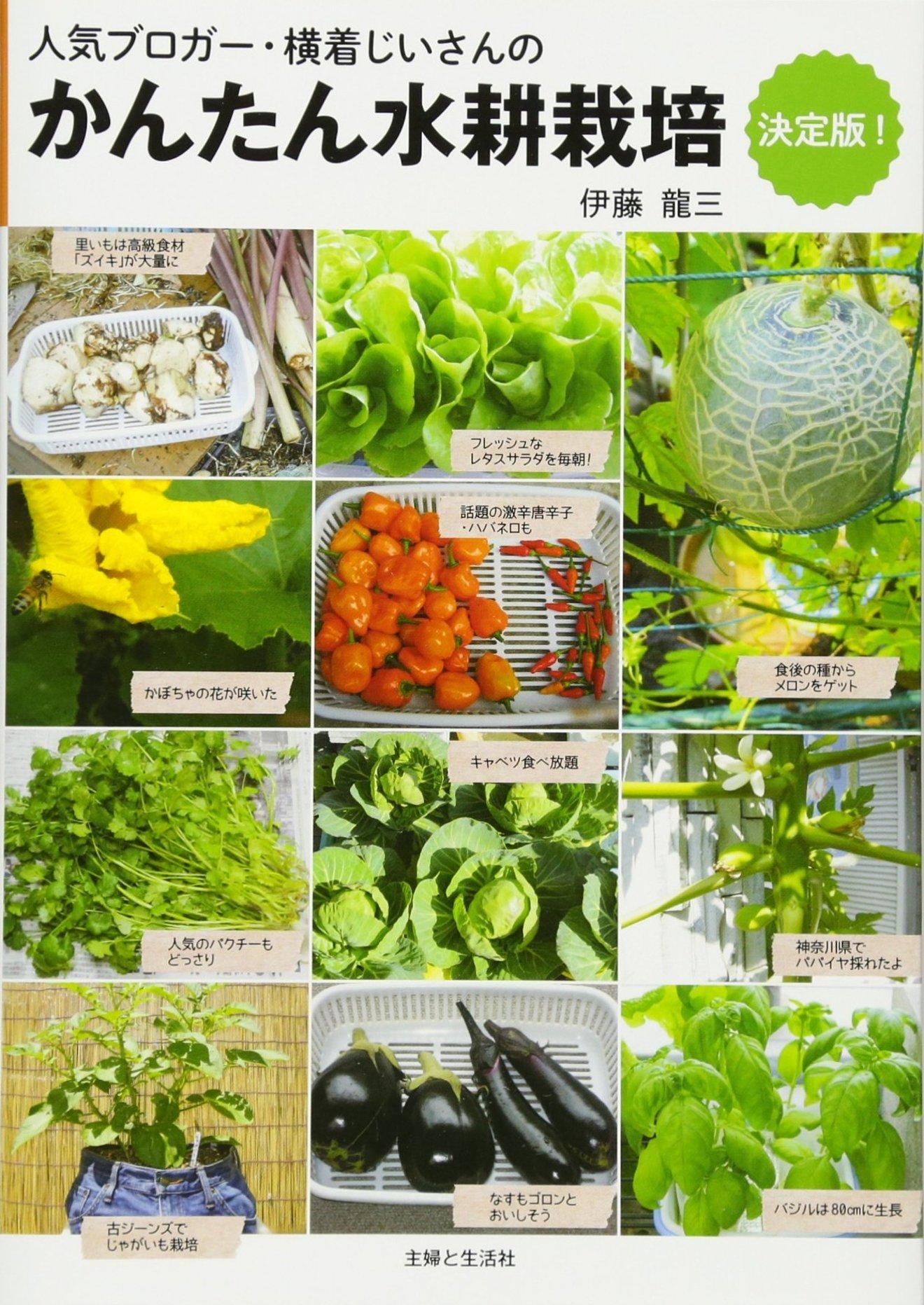 水耕栽培をしたい人必見!育てやすい種類などご紹介!
