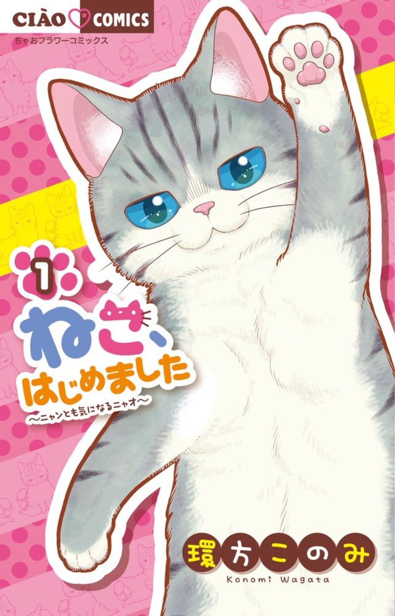 『ねこ、はじめました』が面白い!ゆるいネココメディの魅力をネタバレ紹介!