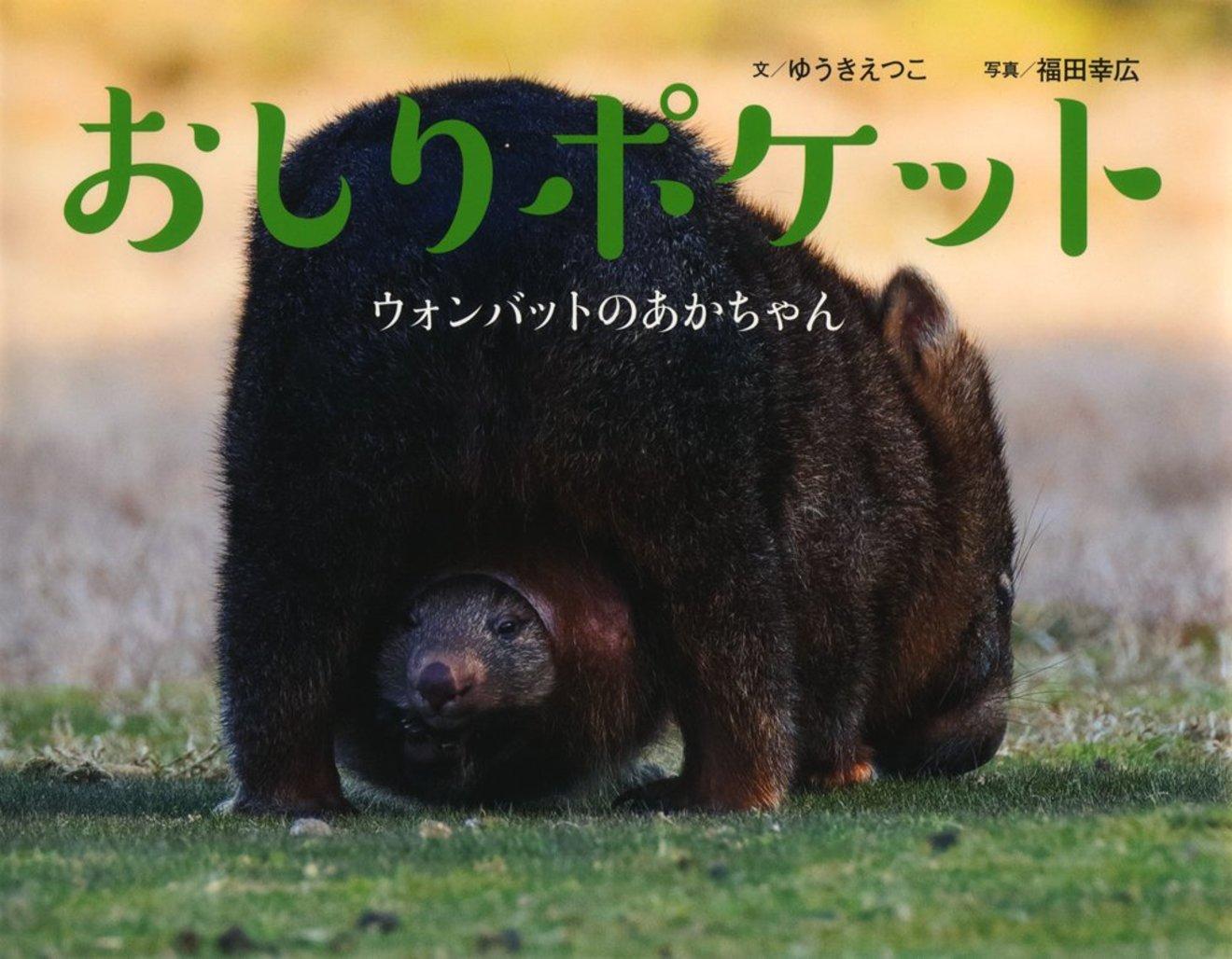 ウォンバットってどんな動物?かわいすぎる性格と生態、食べ物などをご紹介!