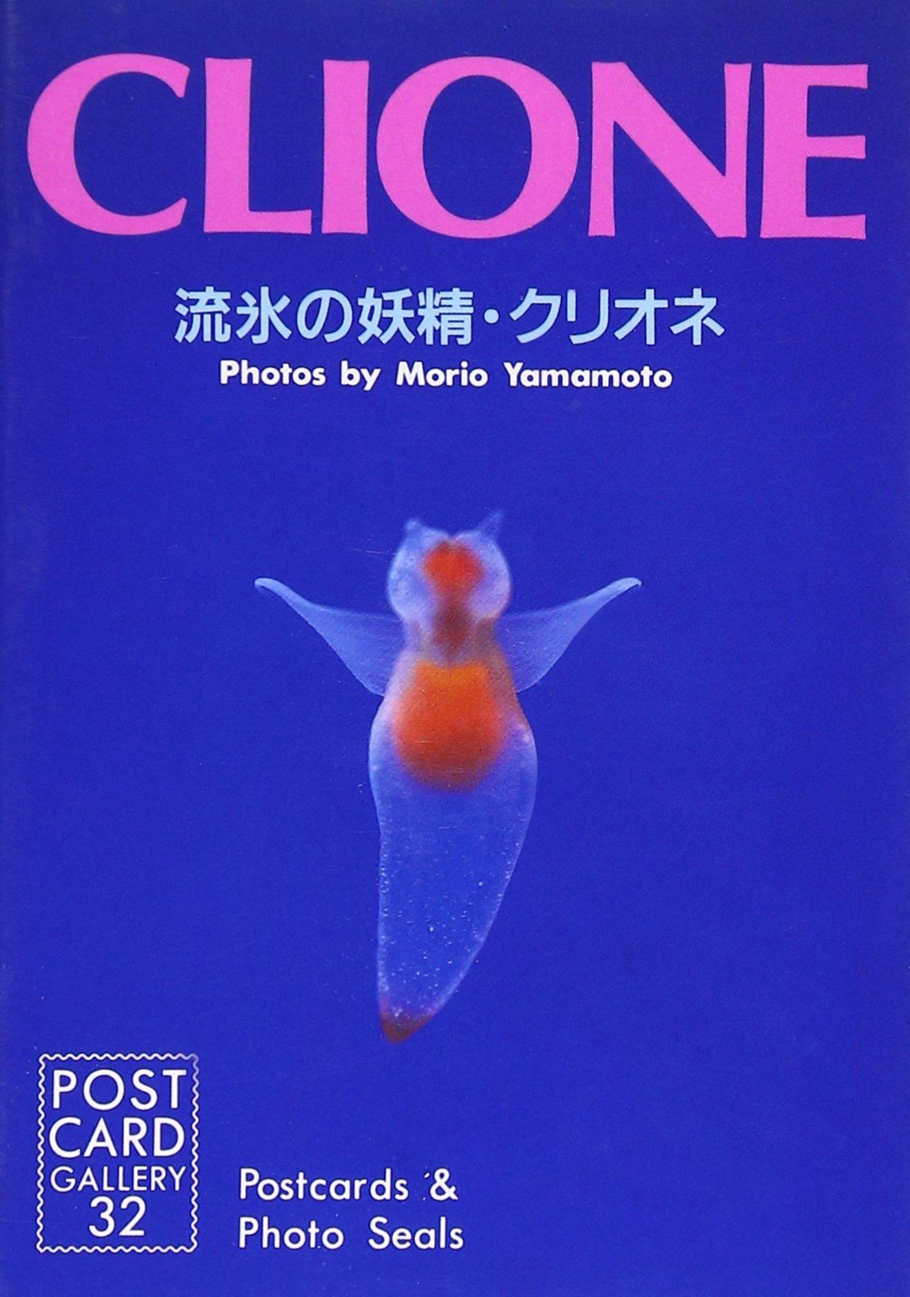 珍しすぎるクリオネの生態を紹介!透明な理由、食べ物や飼育のコツなどを解説