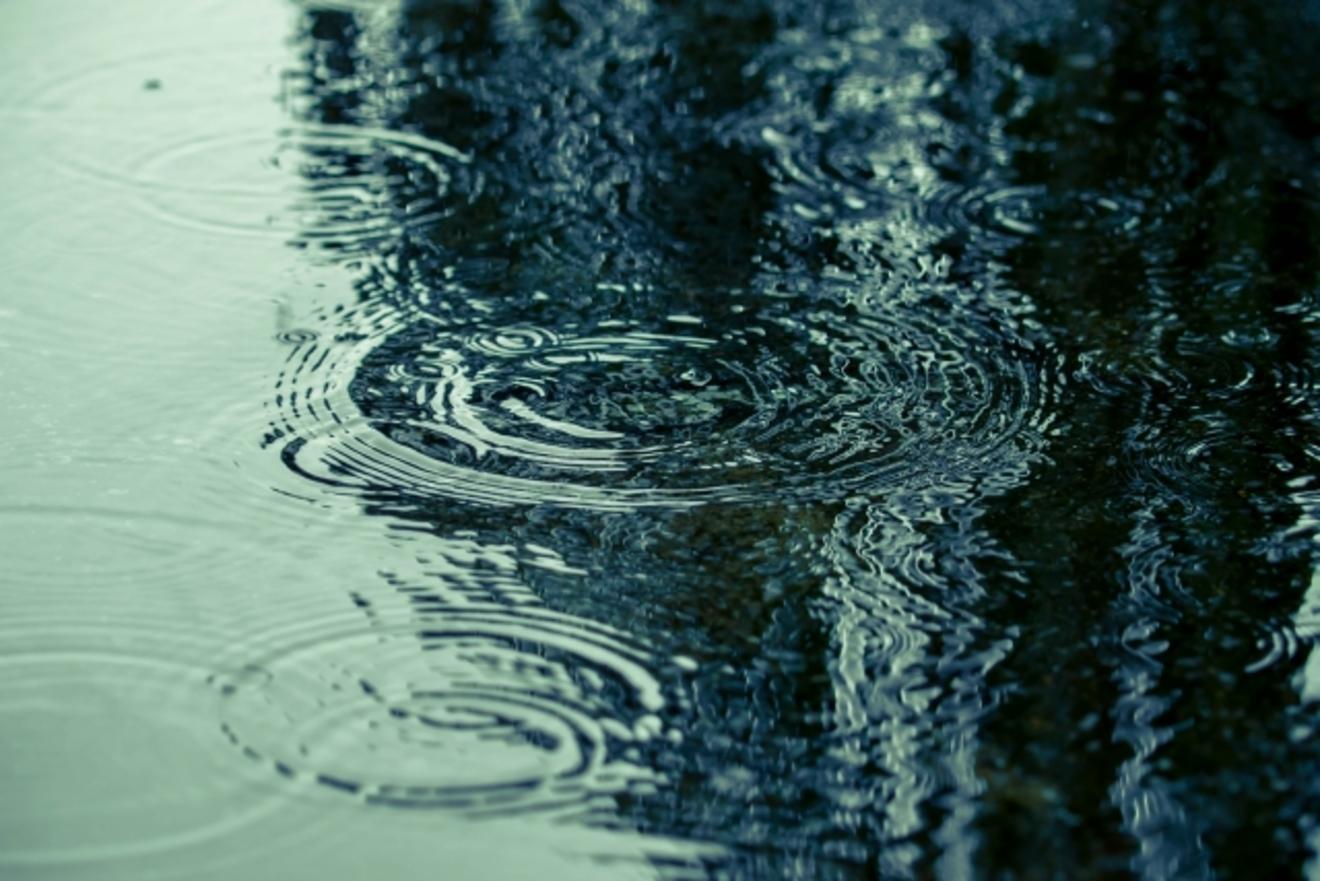 雨の日にどっぷり浸かりたい。孤独でロマンティックな本3冊