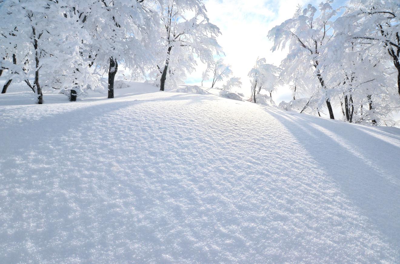 雪の山荘や館が舞台のミステリー小説おすすめ6選!クローズド・サークルの醍醐味!
