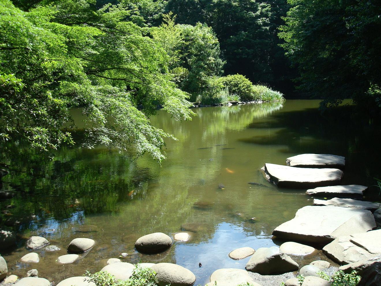 自然主義とは。日本近代文学の作家と『蒲団』など代表的な作品を紹介!