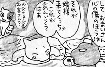 痔猫と嫁様