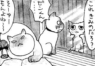 集会猫ゼンとメロディ、ときどきお姉ちゃま