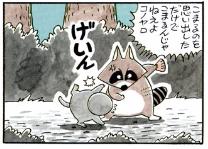名言3:森一番のいじめっ子【アライグマくん】