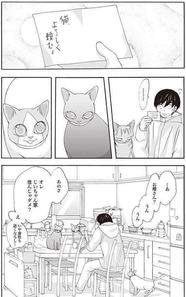 漫画『片桐くん家に猫がいる』あらすじ