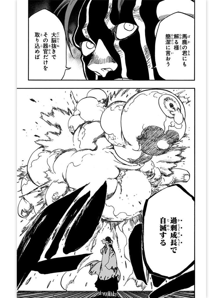 10. 涅マユリ(くろつちまゆり)