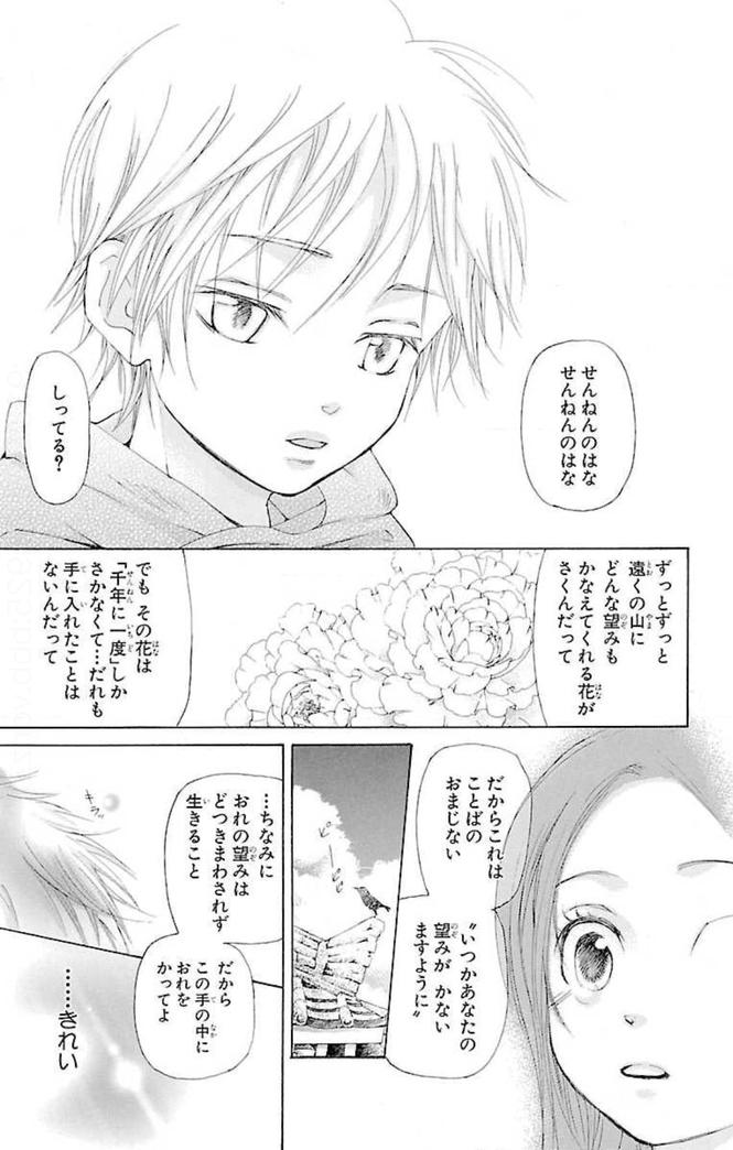 『女王の花』が咲いた時に見えてくるものとは?【あらすじ】