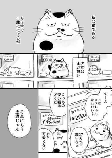 漫画『おじさまと猫』の魅力4:ペットと人間の関係性にじーんとする